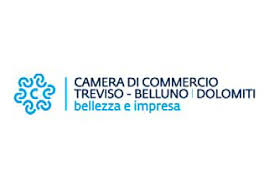 CAMERA DI COMMERCIO OK